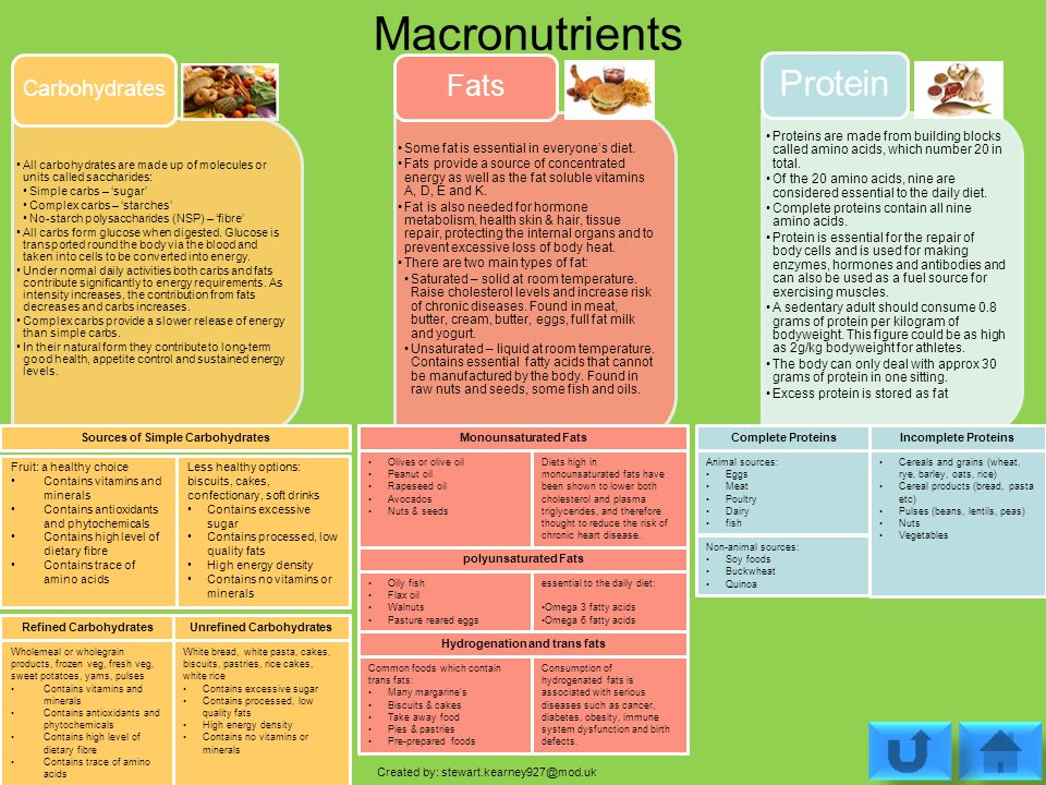 List Of Foods And Their Macronutrients