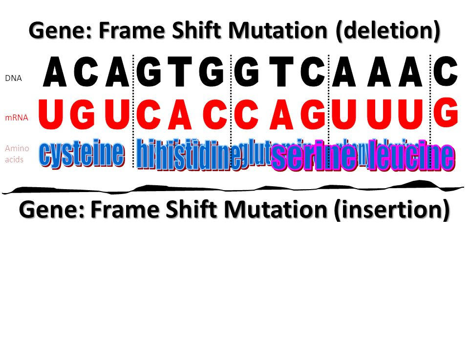 MUTATIONS. - ppt video online download