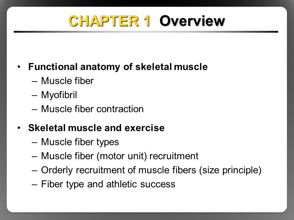 It's just a picture of Superb Mcgraw Hill Muscle Labeling