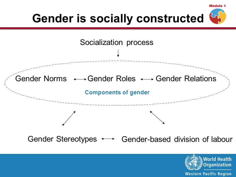 what is gender based division of labor