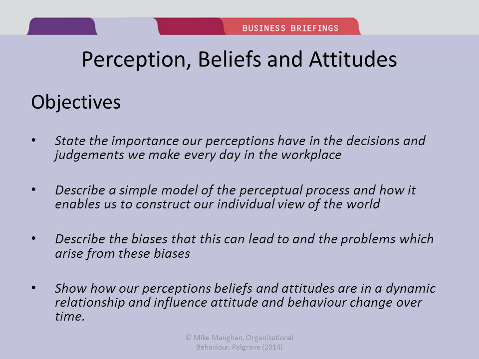 importance of perception in organizational behaviour