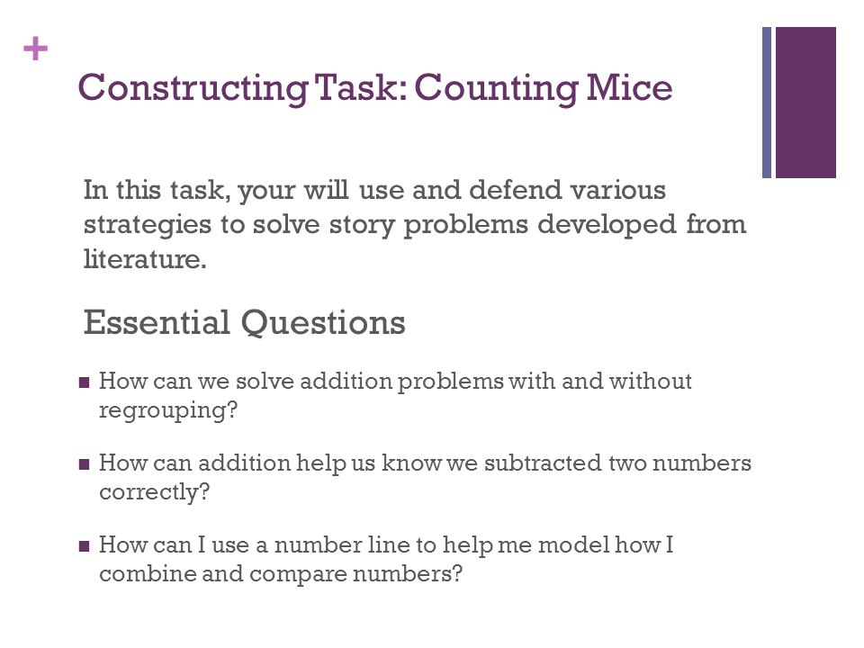 Constructing Task: Counting Mice