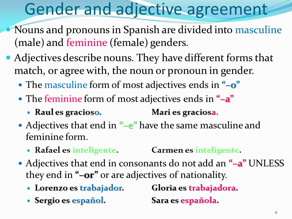 Captulo 2 Gramtica 1 Ser With Adjectives Gender And Adjective