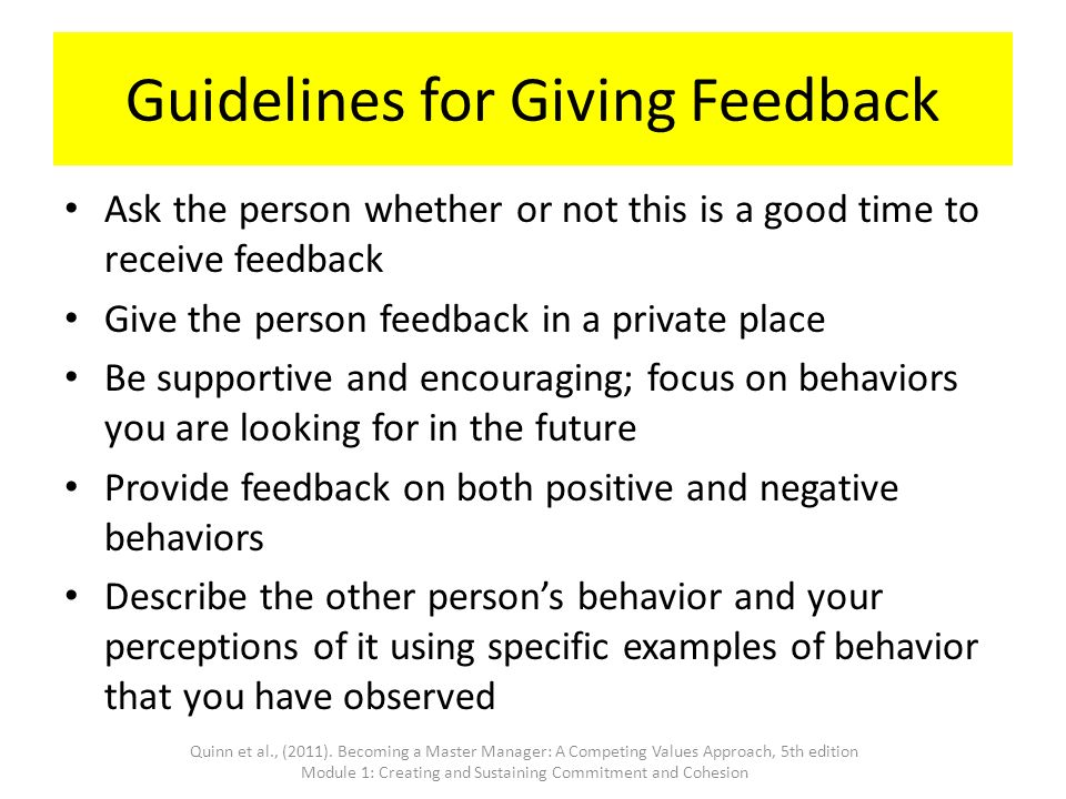 Guidelines+for++Feedback Sales Manager Performance Evaluation Examples on filled out, forms for job, to write, for teamwork, employee work,