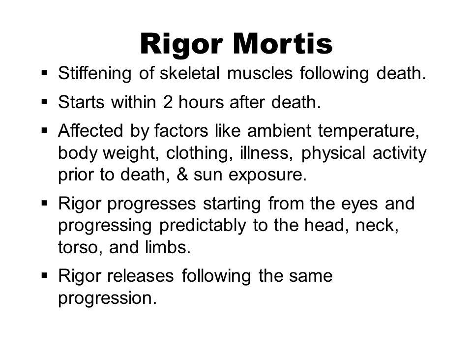 R R Mortis Stiffening Of Skeletal Muscles Following