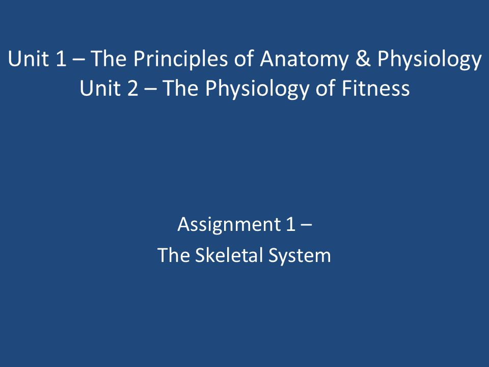 Assignment 1 – The Skeletal System - ppt download