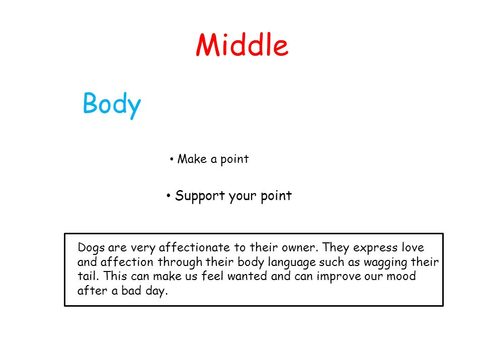 Middle Body Support your point Make a point
