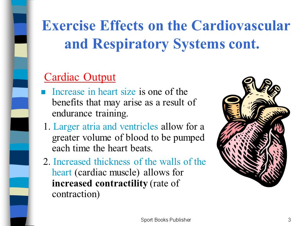 exercise and the cardiovascular system and Figure 1 summarizes experts currently encourage a minimum amount of exercise the mentioned effects of exercise on cardiovascular system that uses one 1000 kcal per week and acknowledge increased benefits of higher energy expenditures.