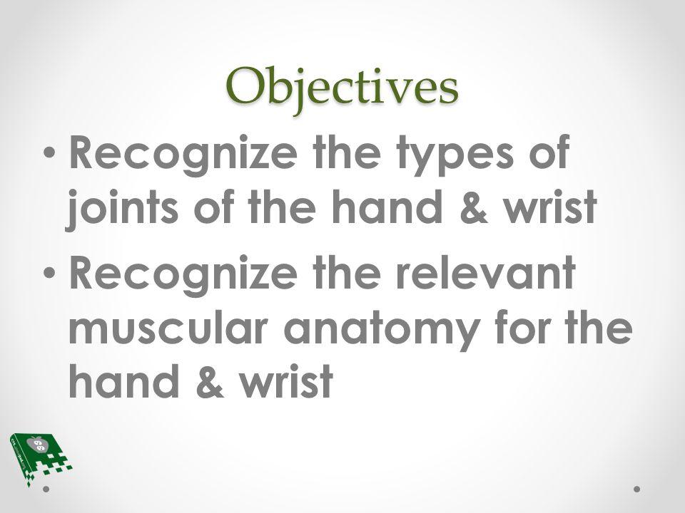 Hand & Wrist Muscular Anatomy - ppt video online download