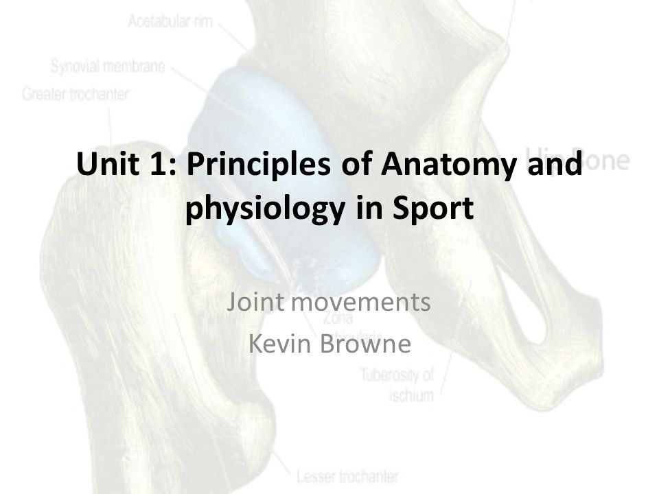 Unit 1: Principles of Anatomy and physiology in Sport - ppt download