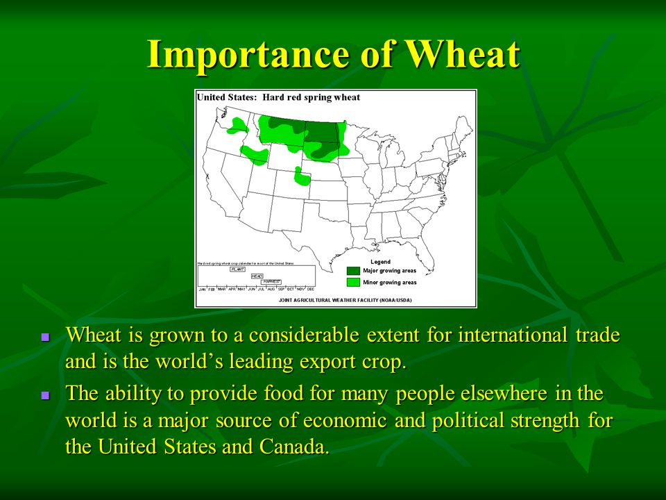 Where are Agricultural Regions in MDCs? - ppt video online