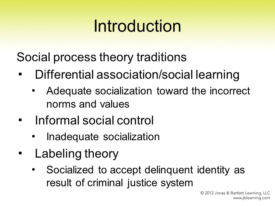 social process theory of crime