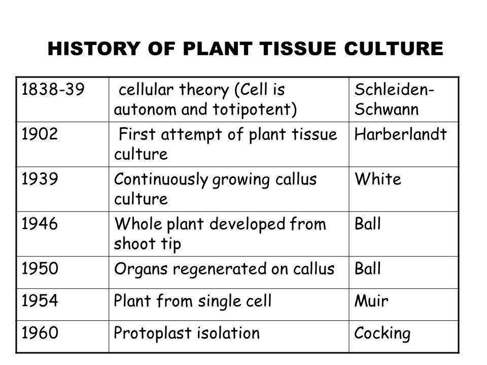 Definition: The term plant tissue culture is described in