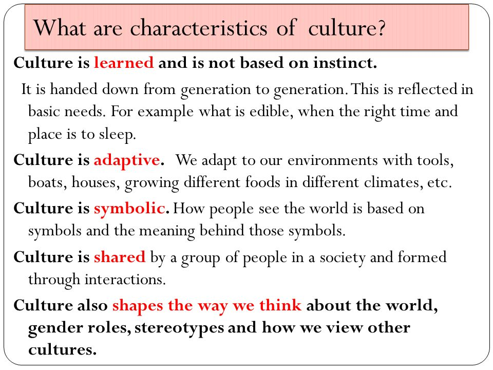 meaning and characteristics of society pdf